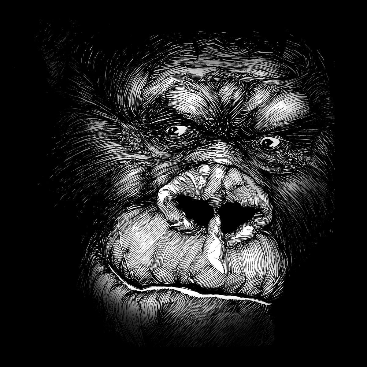 Cette tête de gorille ne dépareillerait pas dans le bestiaire de Ben Basso.